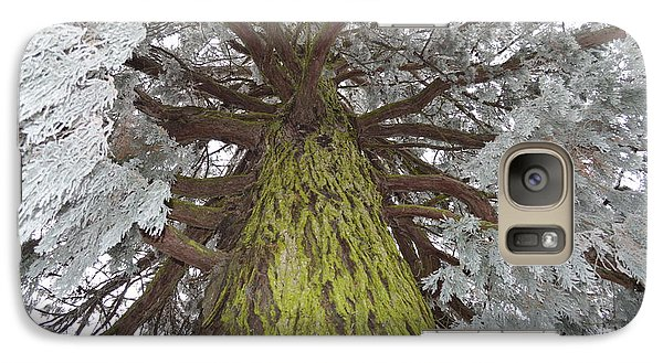 Galaxy Case featuring the photograph Ready For Christmas by Felicia Tica