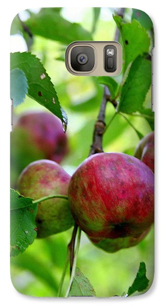 Galaxy Case featuring the photograph Ready For Picking by Paula Tohline Calhoun