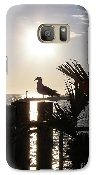 Galaxy Case featuring the photograph Ready For Sunset by Bev Conover