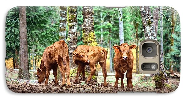 Galaxy Case featuring the pyrography Red Angus Calves by Larry Campbell