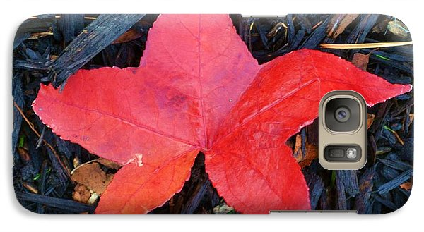 Galaxy Case featuring the pyrography Red Autumn Leaf by P Dwain Morris
