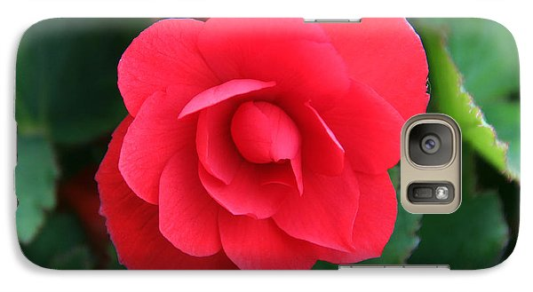 Galaxy Case featuring the photograph Red Begonia by Sergey Lukashin