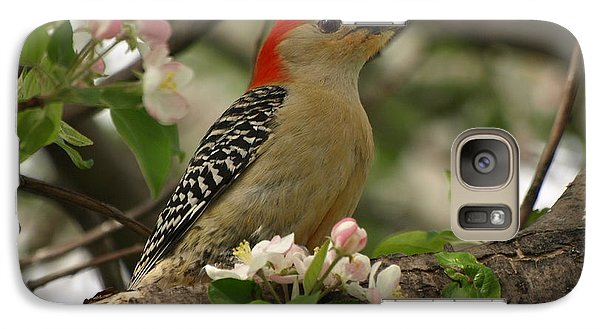 Galaxy Case featuring the photograph Red-bellied Woodpecker by James Peterson