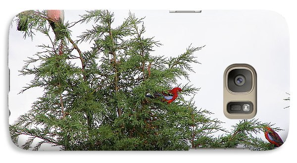 Galaxy Case featuring the photograph Red-breasted Cockatoos And Crimson Rosellas by Bev Conover