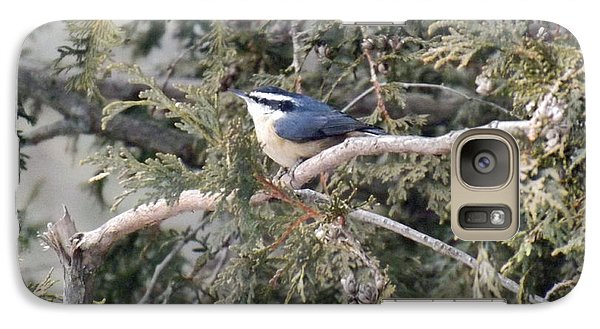 Galaxy Case featuring the photograph Red Breasted Nuthatch by Brenda Brown