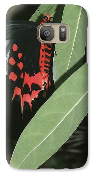 Galaxy Case featuring the photograph Red Butterfly by Robert Nickologianis