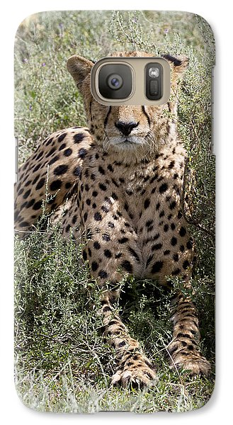 Galaxy Case featuring the photograph Red Cheetah Portrait by Chris Scroggins