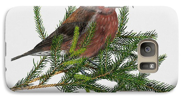 Red Crossbill -common Crossbill Loxia Curvirostra -bec-crois Des Sapins -piquituerto -krossnefur  Galaxy Case by Urft Valley Art