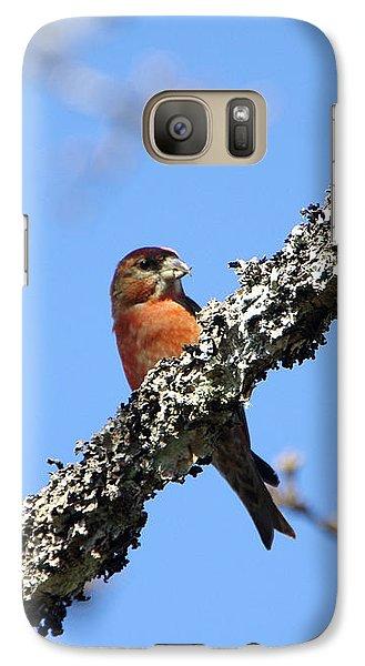Red Crossbill Finch Galaxy S7 Case