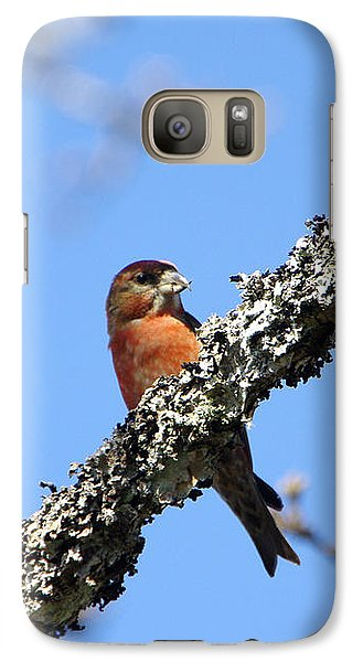 Red Crossbill Finch Galaxy Case by Marilyn Wilson