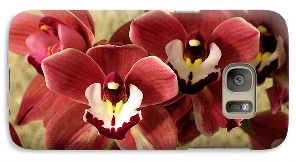 Galaxy Case featuring the photograph Red Cymbidium Orchid by Alfred Ng