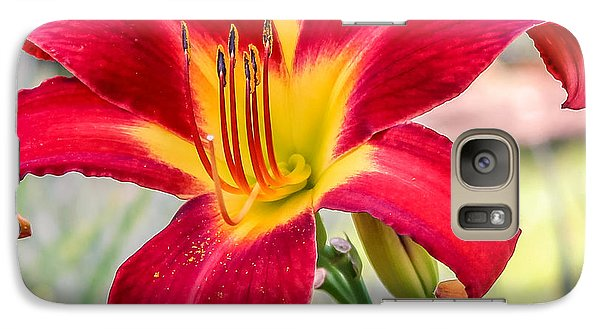 Galaxy Case featuring the photograph Red Daylily by Rob Sellers
