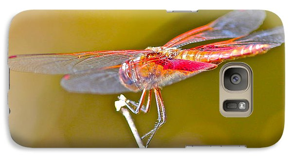 Galaxy Case featuring the photograph Red Dragonfly by Cyril Maza