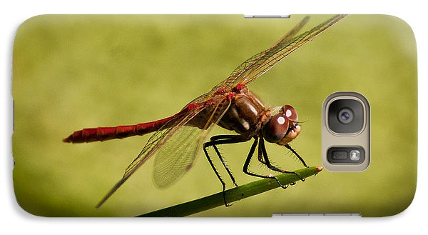 Galaxy Case featuring the photograph Red Dragonfly by Janis Knight