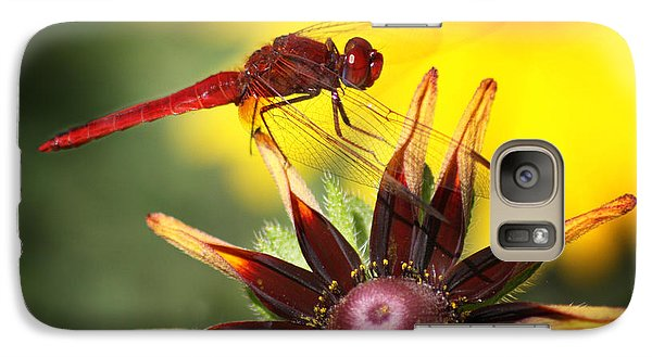 Galaxy Case featuring the photograph Red Dragonfly by Martina  Rathgens