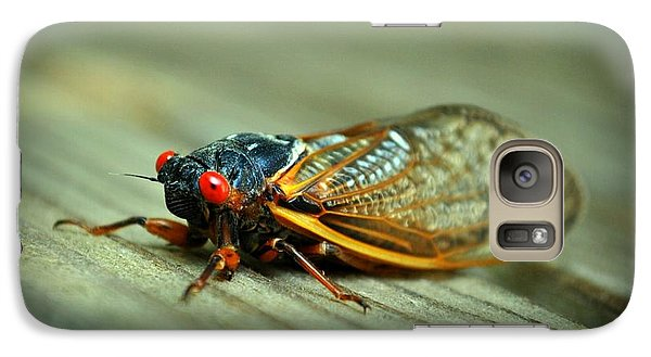 Galaxy Case featuring the photograph Red Eye Cicada by Kelly Nowak