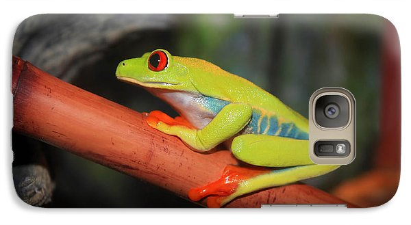Galaxy Case featuring the photograph Red Eyed Tree Frog by Cathy  Beharriell
