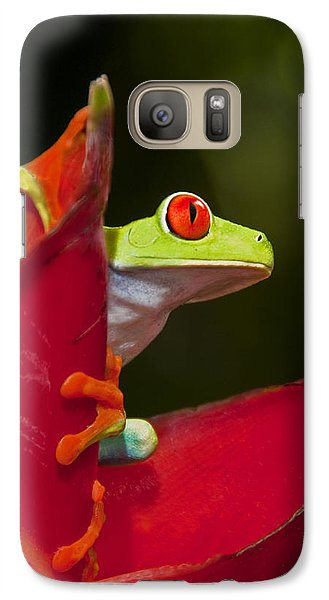 Galaxy Case featuring the photograph Red Eyed Tree Frog 3 by Dennis Cox WorldViews
