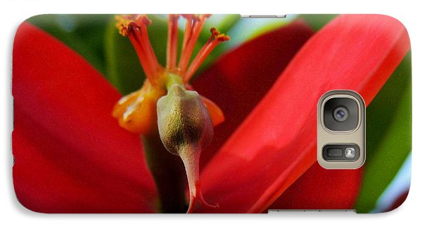 Galaxy Case featuring the photograph Red Flower by Kristine Merc