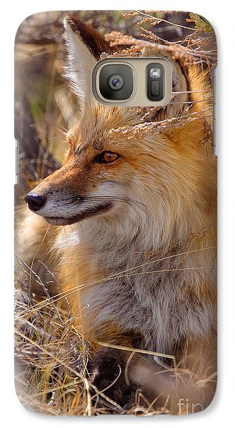Galaxy Case featuring the photograph Red Fox At Rest by Aaron Whittemore