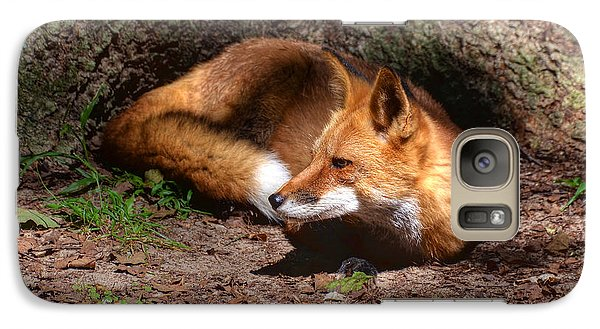 Galaxy Case featuring the photograph Red Fox Resting by Kathy Baccari