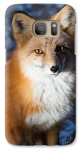 Galaxy Case featuring the photograph Red Fox Standing by John Wadleigh