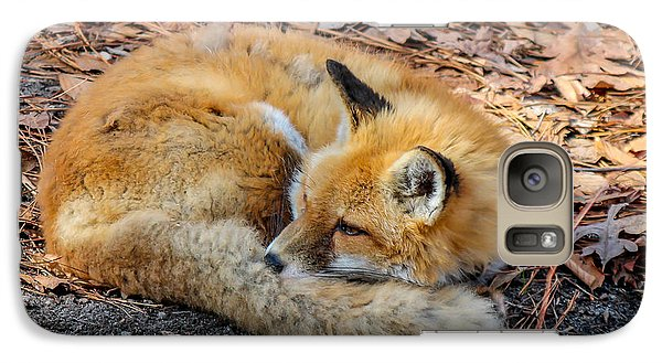 Galaxy Case featuring the photograph Red Fox  by Trace Kittrell