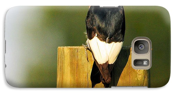 Galaxy Case featuring the photograph Red-headed Woodpecker by Olivia Hardwicke