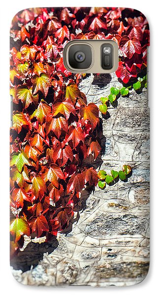 Galaxy S7 Case featuring the photograph Red Ivy On Wall by Silvia Ganora