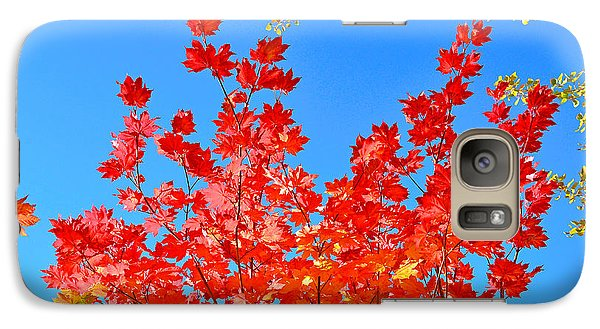 Galaxy Case featuring the photograph Red Leaves by David Lawson