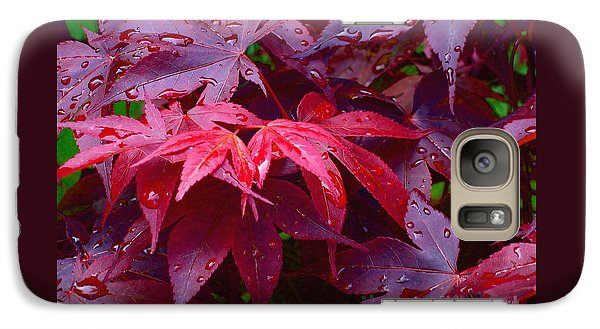 Galaxy Case featuring the photograph Red Maple After Rain by Ann Horn