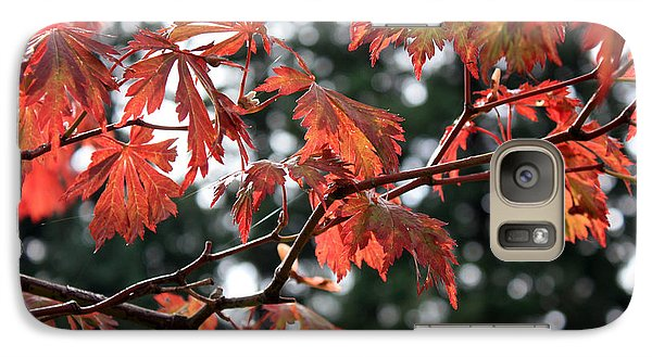 Galaxy Case featuring the photograph Red Maple Leaves by Gerry Bates