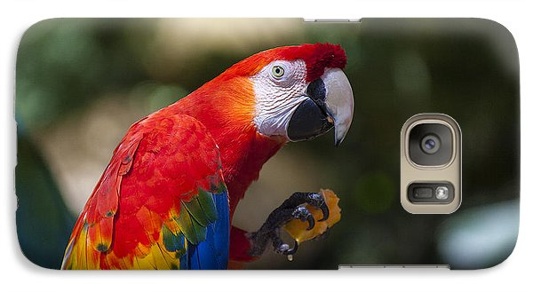 Red Parrot  Galaxy S7 Case by Garry Gay