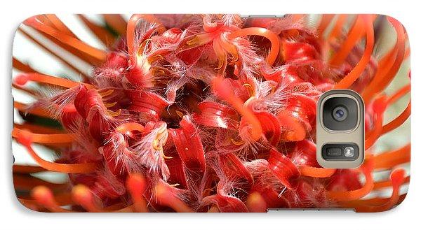 Red Pincushion Close Up Galaxy S7 Case