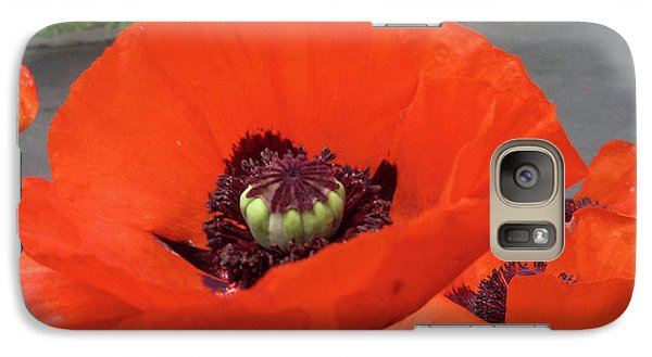 Galaxy Case featuring the photograph Red Poppy by Barbara Griffin