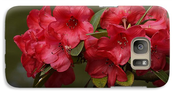 Galaxy Case featuring the photograph Red Rhododendron by Inge Riis McDonald