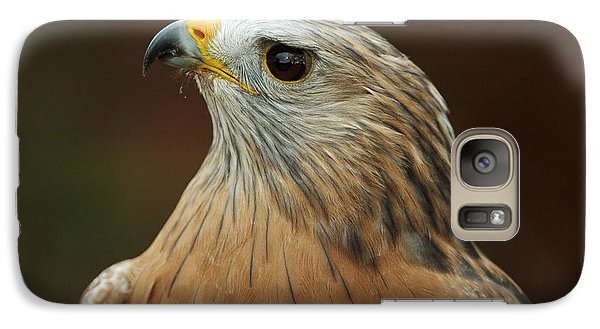Galaxy Case featuring the photograph Red-shouldered Hawk by Doug Herr