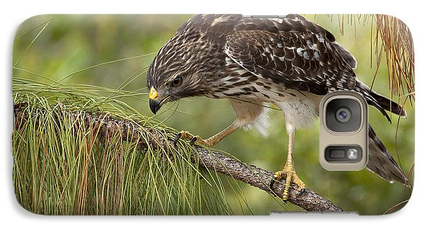 Galaxy Case featuring the photograph Red Shouldered Hawk Photo by Meg Rousher