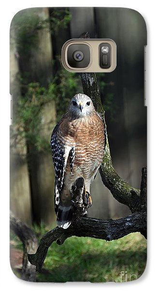 Galaxy Case featuring the photograph Red Shouldered-hawk by Robert Meanor