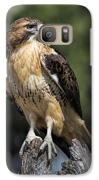 Red Tailed Hawk Galaxy S7 Case