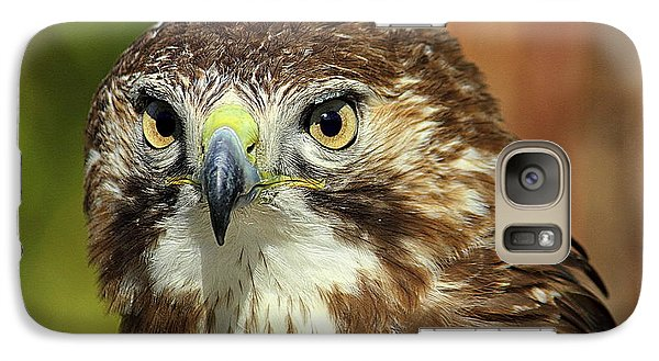 Galaxy Case featuring the photograph Red Tailed Hawk by Lisa L Silva