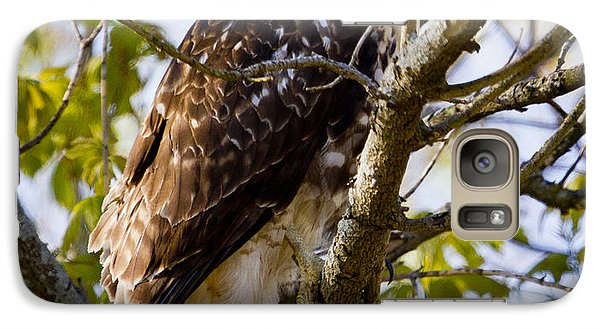 Galaxy S7 Case featuring the photograph Red Tailed-hawk by Ricky L Jones