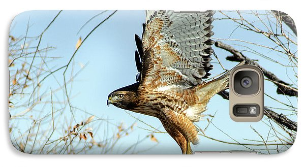 Galaxy Case featuring the photograph Red Tailed Hawk Sequence #2 by Stephen  Johnson