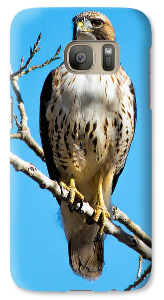 Galaxy Case featuring the photograph Red Tailed Hawk Standing Tall by Stephen  Johnson