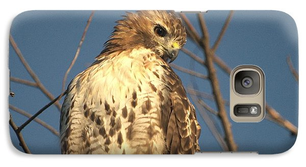 Galaxy Case featuring the photograph Red Tailed Hawk  by Susan  Dimitrakopoulos