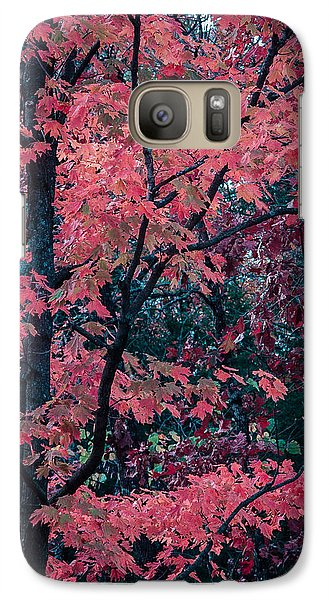 Galaxy Case featuring the photograph Red Tree by Wayne Meyer