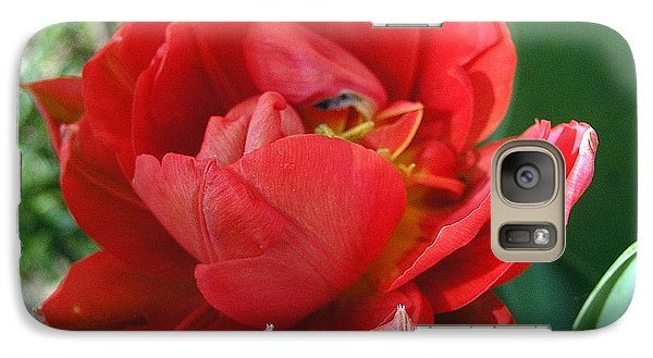 Galaxy Case featuring the photograph Red Tulip by Vesna Martinjak