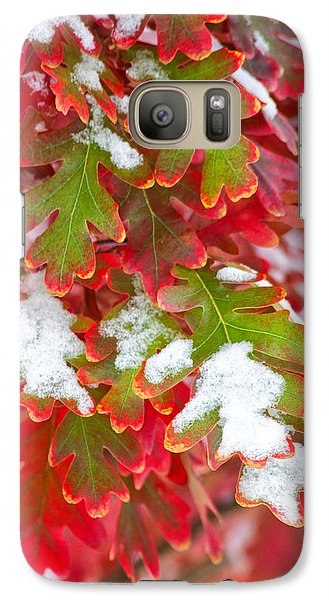 Galaxy Case featuring the photograph Red White And Green by Ronda Kimbrow