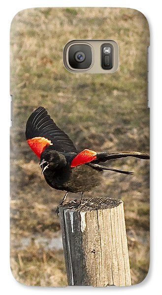Galaxy Case featuring the photograph Red Wiing Mating Display by Daniel Hebard
