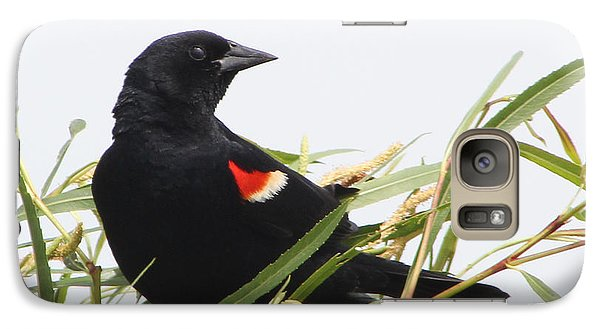 Galaxy Case featuring the photograph Red-winged Beauty by Anita Oakley